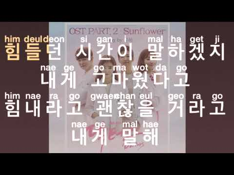 [KARAOKE] Younha - Sunflower (Doctors OST)