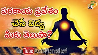 Download Unknown Facts About Parakaya Pravesham And Other Siddhis | పరకాయ ప్రవేశం చెసే విద్య మీకు తెలుసా | CC Mp3 and Videos
