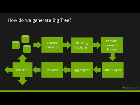 Big Tree: Using Machine Learning to Create a Knowledge Graph