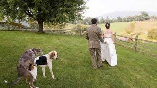 Свадебки. Приколы от жениха и невесты.