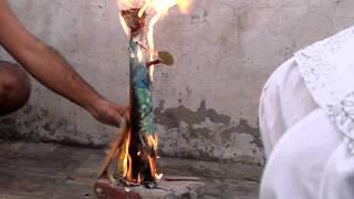 Dussehra 2011 - Mini Ravana being burned