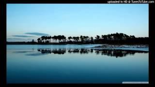 Violeta de la Timisoara  - JOC UZIVO LIVE