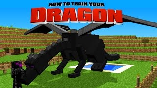 Minecraft - HOW TO TRAIN YOUR DRAGON - Let's Get an Ender Dragon! [46]