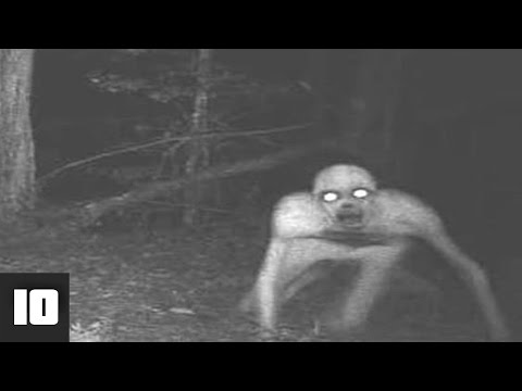 10 Scary Camera Trap Photos You Won't Believe Actually Exist | LIST KING thumbnail
