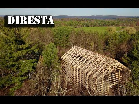 DiResta 55 My Dream Shop
