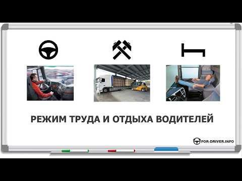 6.Режим труда и отдыха водителей. Еженедельный отдых. Перерывы во время работы водителя.
