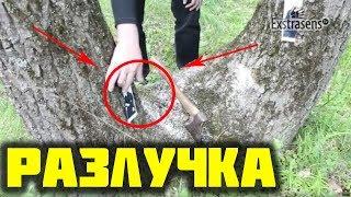 Разлучка-рассорка на двойном дереве