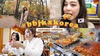 🍁AUTUMN IN KOREA PT.1 เที่ยวจังหวัดลับในเกาหลี ฤดูใบไม้ร่วง! (ft. 하이프래 Hi Prae) | Babyjingko