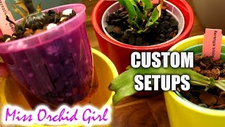 Customizing Orchid media and setups to suit YOU - My tips & tricks