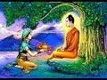Download HIMI SANARAMARA LOKA SIVANKARA  !!! MP3 song and Music Video