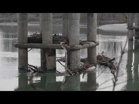Magra fiume Po,