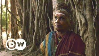 Gods and cows, holy and Holi (India shorts competition 3/3) | DW Documentary