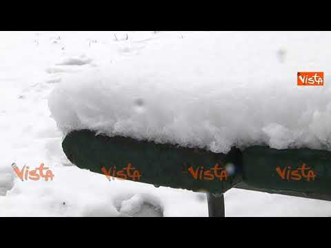 Torino sotto 5 cm di neve