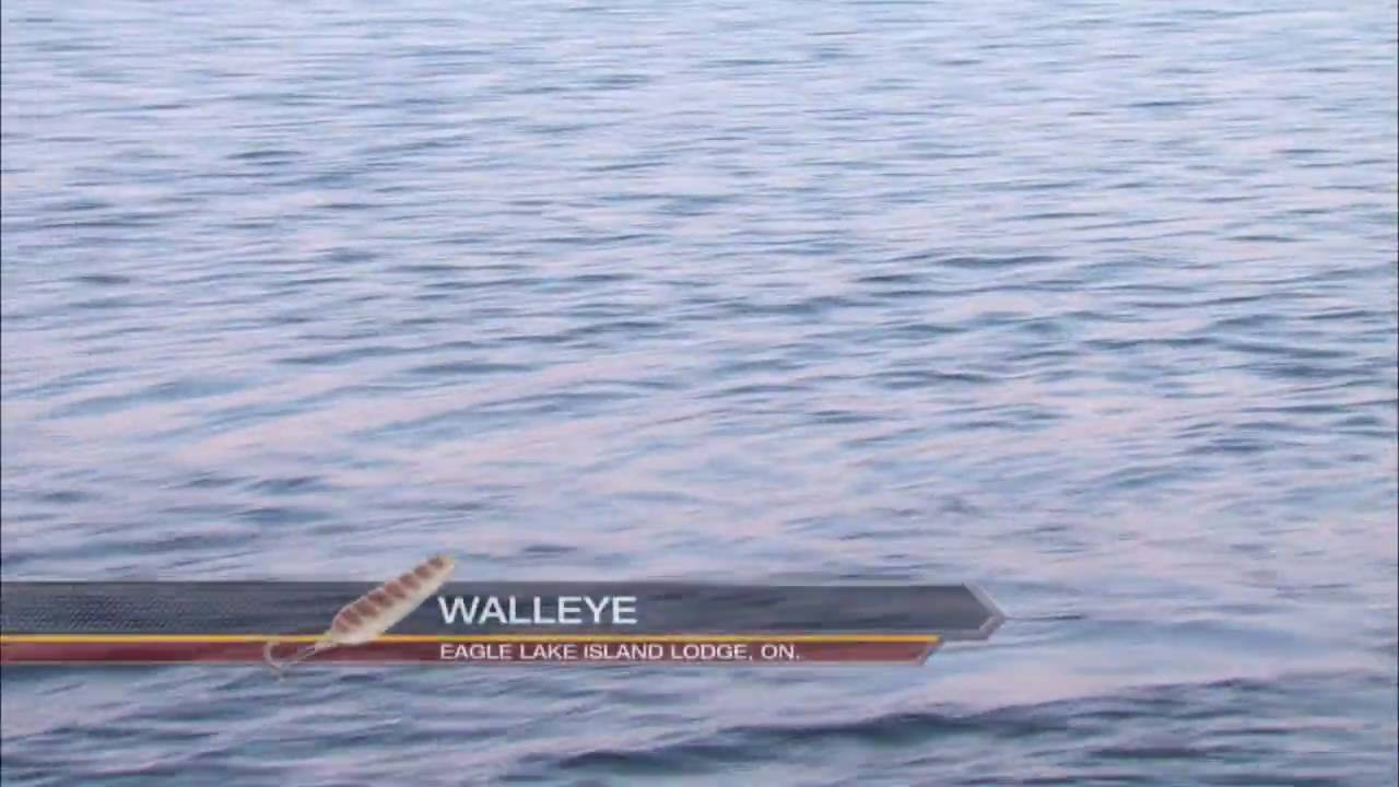 Canadian Sportfishing Trolling for Walleye, Eagle Lake Island Lodge Csf 24  08 03