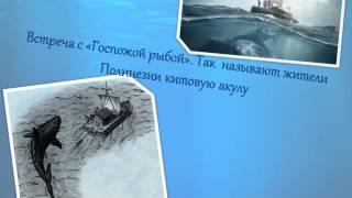 Тур Хейердал «Путешествие на Кон -- Тики»