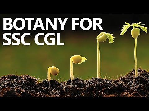 Botany Made Easy for SSC CGL Aspirants- Plant Morphology