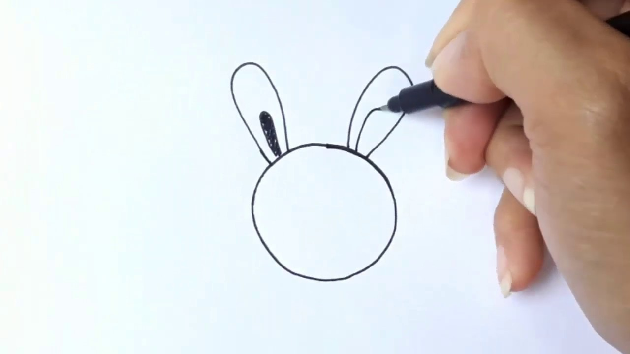 วาดรูปการ์ตูนหัวกลม (กระต่ายกับเต่า) วาดง่ายมากๆ