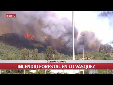Incendio forestal se registra en la comuna de Casablanca
