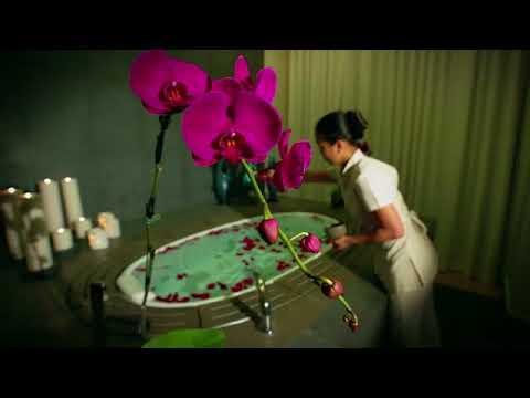 SOFITEL DUBAI DOWNTOWN Brand Video
