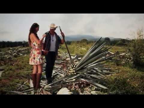 Hijos De Barron - Mi Pequeño Mundo (Video Oficial 2014)