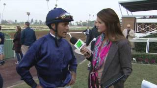 "Stevens: Taris ""Reminds Me of Beholder"""