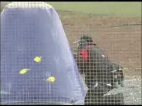 paintball- cyprus sports live
