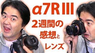 SONY α7R III 購入2週間目の感想と小型の単焦点レンズ Sonnar T* FE 35mm F2.8 ZA そして中望遠 FE 85mm F1.4 GM での撮影作例など