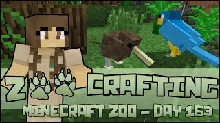 Zoo Crafting! Kiwi, Parrots, and Owls in the Aussie Aviary!! - Episode #163 | Season 2