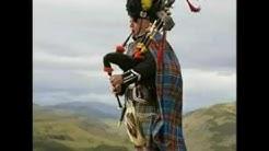 Scotland born to be alive