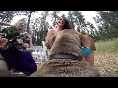 An Idaho Wedding (through the eyes of Hercules)