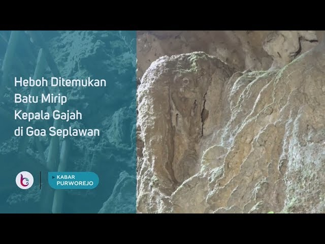 Batu Mirip Kepala Gajah di Goa Seplawan Hebohkan Purworejo