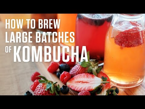 How To Make Kombucha In Large Batches To Serve On Draft