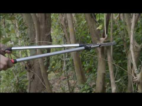Garden shears with AliExpress