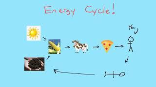 Chemistry Fundamentals - U03.01 - Energy