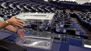 European elections: will populism triumph? - the network