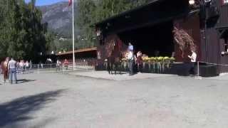 Dyrskun i Seljord 2014 hesteutstillinger film 2 hopper