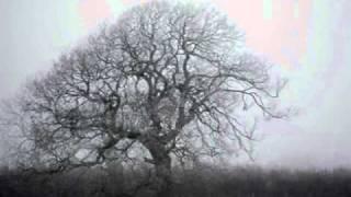Amniamnyz - Depresija ir sapnas