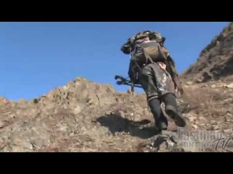 Cam & Roy's Dall Sheep Hunt on Pioneer Peak (RAW and REAL footage)