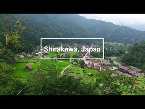Japan Vlog 12 - The Famous Shirakawa Village (Kanazawa and snapping turtle sake??)