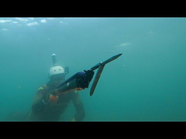 Spearfishing Shallow Winter Ambush |Spearfishing Life 🇬🇷