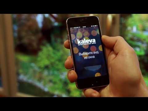 Виртуальное окно от Kaleva