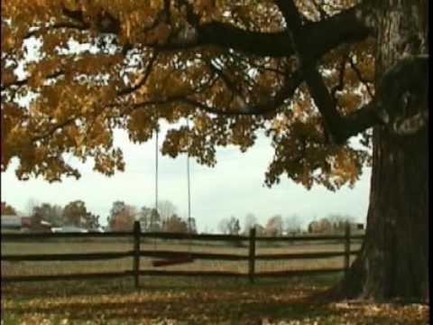 Fall's a Beautiful Time of Year BUDDY DAVIS Music Video