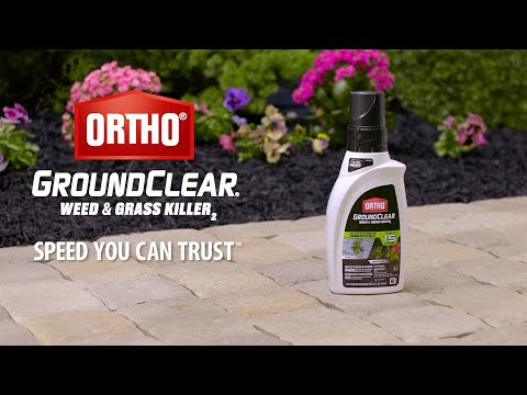 How to Use Ortho® GroundClear® Weed & Grass Killer2 Concentrate