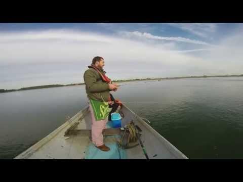 Hanningfield Reservoir Trout Fishing