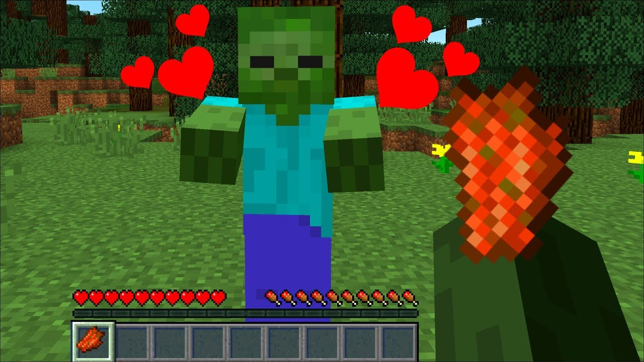 HOW TO TAME A ZOMBIE In MINECRAFT !!