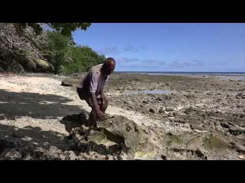 The story of Toman Island / Histori blong Toman Ailan (Malakula, Vanuatu)