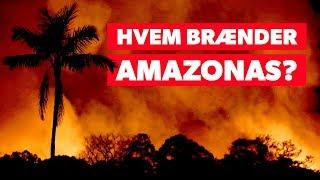 Kan vi nå at redde Amazonas?