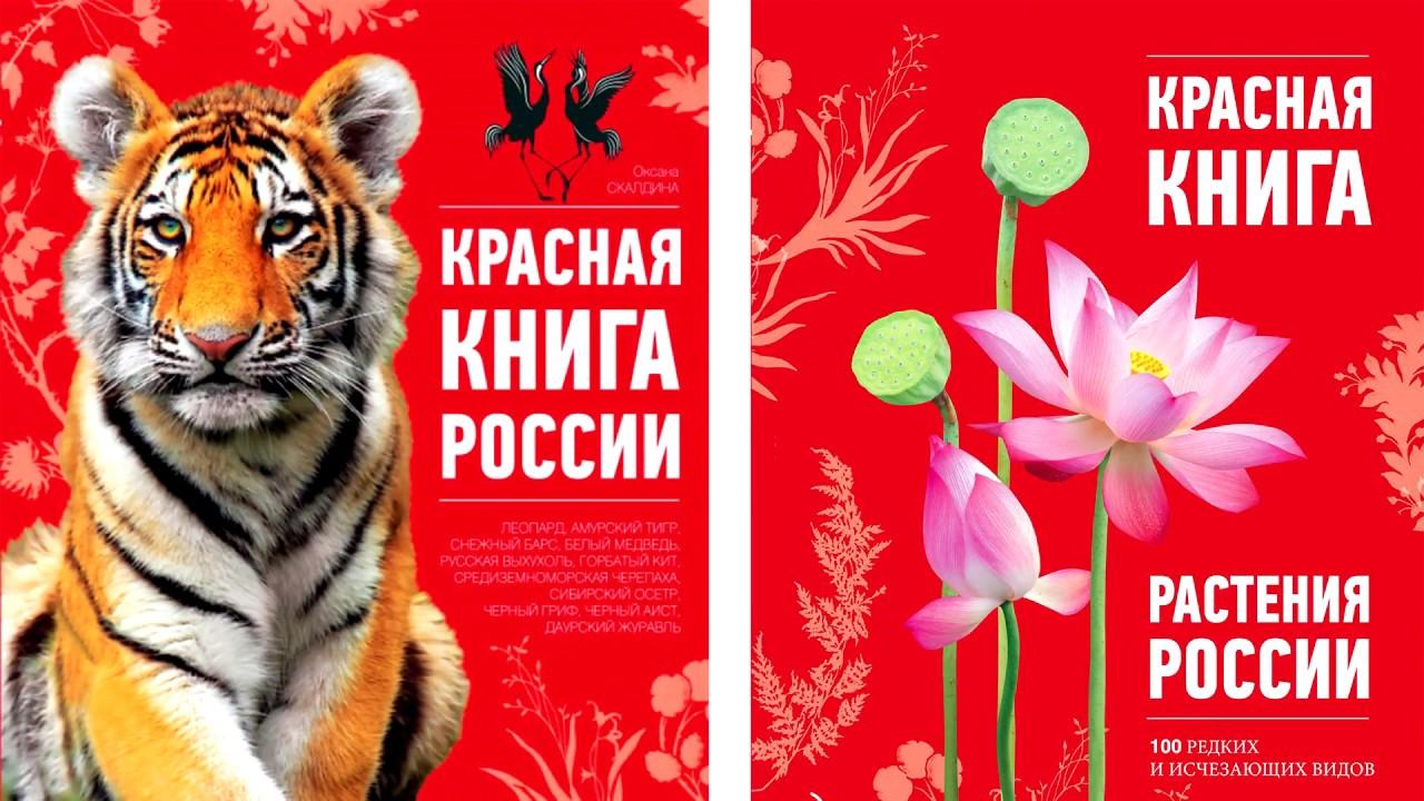 Картинки красная книга обложка