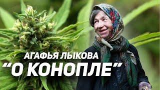 Агафья Лыкова 2019. Рассказ о конопле (with English subtitles)