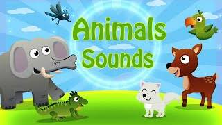 Animal Sounds for Kids - Educational Animal Video - Toddlers Preschool Learning Animals By Papumba
